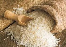 Νέες αγορές αναζητούν οι παραγωγοί ρυζιού από την Κ. Μακεδονία - Κεντρική Εικόνα