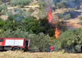Φωτιά στη Σαλαμίνα - Εκκενώνονται προληπτικά σπίτια στην Κακή Βίγλα - Κεντρική Εικόνα