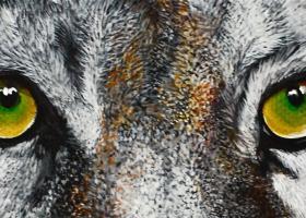 Η ισχυρή γενετική τεχνική CRISPR για πρώτη φορά αποκατέστησε εν μέρει την όραση σε τυφλά ζώα - Κεντρική Εικόνα
