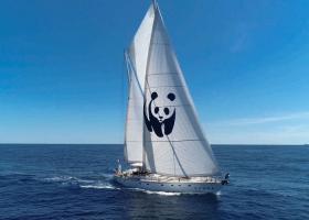 Συνεχίζεται η περιοδεία του ιστιοπλοϊκού του WWF κατά των εξορύξεων - Κεντρική Εικόνα