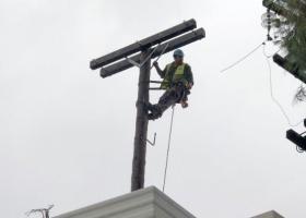Ολοκληρώθηκε η ηλεκτροδότηση 155.000 παροχών στο νομό Χαλκιδικής - Κεντρική Εικόνα
