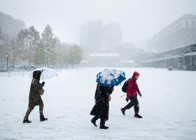 Χιόνισε στην... έρημο για πρώτη φορά μετά από 82 χρόνια! (photos+video) - Κεντρική Εικόνα