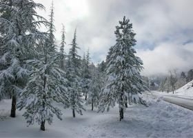 Βούλιαξαν ξανά στο χιόνι πολλά χωριά στην Ήπειρο  - Κεντρική Εικόνα