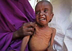Σομαλία: Νέα ανθρωπιστική κρίση, 1 εκατ. παιδιά σε κίνδυνο υποσιτισμού - Κεντρική Εικόνα