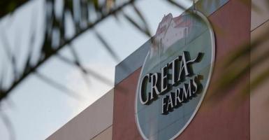 Ποια πρόσωπα απαρτίζουν το νέο ΔΣ της Creta Farms - Κεντρική Εικόνα