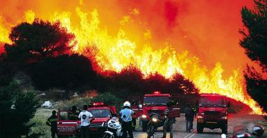 Πάνω από 2.000 αστυνομικοί διατέθηκαν για υποστήριξη του Πυροσβεστικού Σώματος - Κεντρική Εικόνα