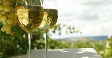 Πολυεπίπεδη προβολή του ελληνικού κρασιού στις αγορές του εξωτερικού - Κεντρική Εικόνα