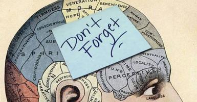 Η πολυάσχολη ζωή ενδυναμώνει τη μνήμη - Κεντρική Εικόνα