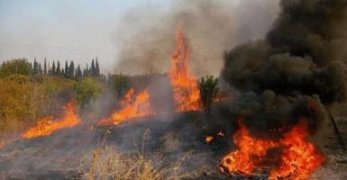 Μεγάλη φωτιά ξέσπασε κοντά στην Πανεπιστημιούπολη Ιωαννίνων - Κεντρική Εικόνα