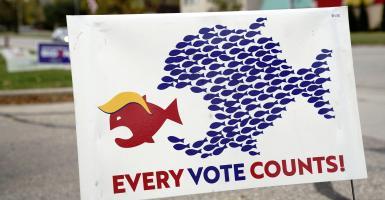 Τι προσδοκά η Ευρώπη από τις αμερικανικές εκλογές - Κεντρική Εικόνα