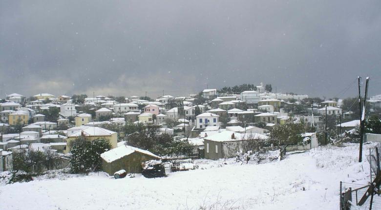 Σημαντικές ζημιές προκάλεσαν οι χιονοπτώσεις και ο παγετός στο δήμο Δυτικής Αχαΐας  - Κεντρική Εικόνα