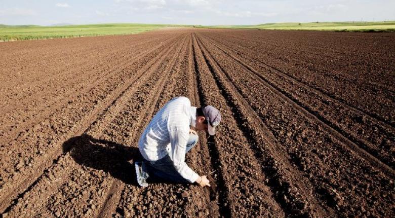 Από σήμερα η προμήθεια Κάρτας Αγρότη στους παραγωγούς - Κεντρική Εικόνα