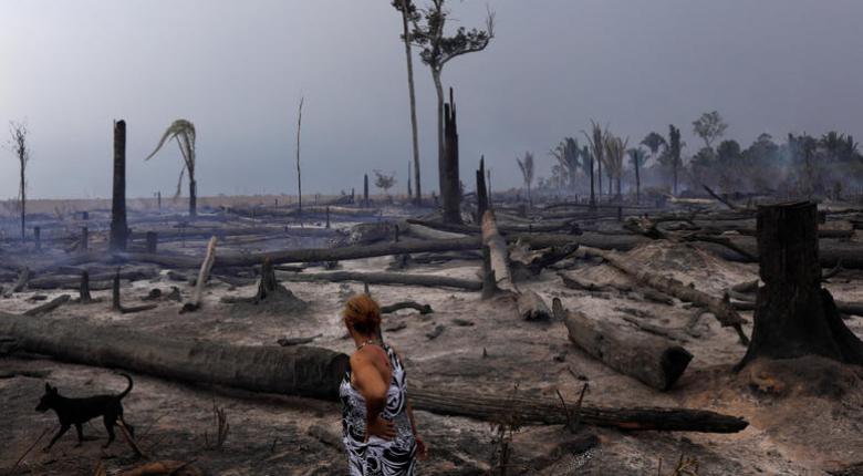 Πυρκαγιές στον Αμαζόνιο: 63 συλλήψεις και πρόστιμα 8,7 εκατ. δολ. ανακοίνωσε η Βραζιλία - Κεντρική Εικόνα