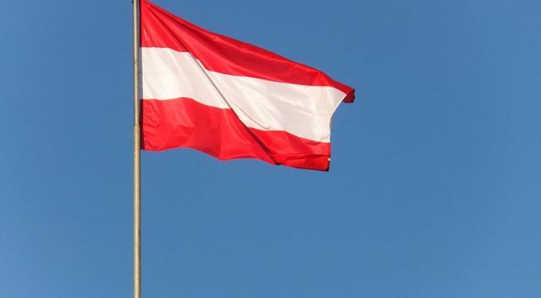 Κυβερνητική κρίση στην Αυστρία: Τα επόμενα βήματα - Κεντρική Εικόνα