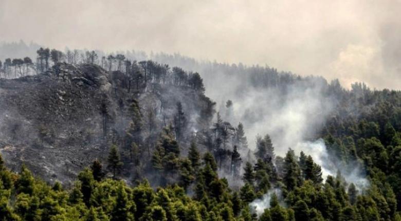 Βουλγαρία: Υπό μερικό έλεγχο τέθηκε φωτιά στο Χάσκοβο - Κεντρική Εικόνα