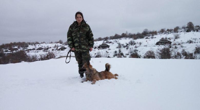 Οι σκύλοι – κομάντο του ελληνικού στρατού σε επιχειρησιακή άσκηση (photos) - Κεντρική Εικόνα