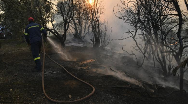 Ολονύχτια μάχη με τις φλόγες στην Εύβοια- Σε ύφεση η φωτιά - Κεντρική Εικόνα