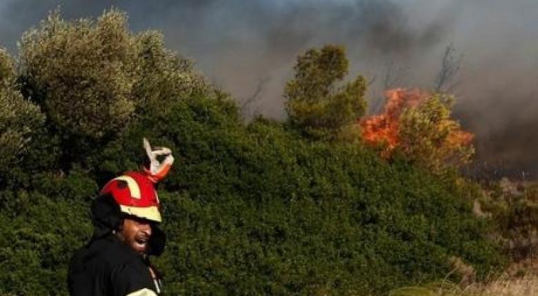 Ισχυρές πυροσβεστικές δυνάμεις εξακολουθούν να επιχειρούν στην Φρίξα της Ηλείας - Κεντρική Εικόνα