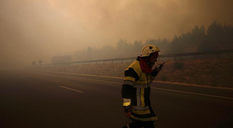 Σε ύφεση οι πυρκαγιές στην περιοχή της Μασσαλίας και στη Μαδέρα - Κεντρική Εικόνα
