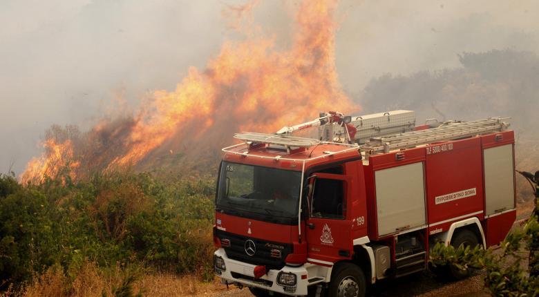 Συνεχίζεται η μάχη με τη φωτιά στην Βορειοανατολική Αττική - Κεντρική Εικόνα