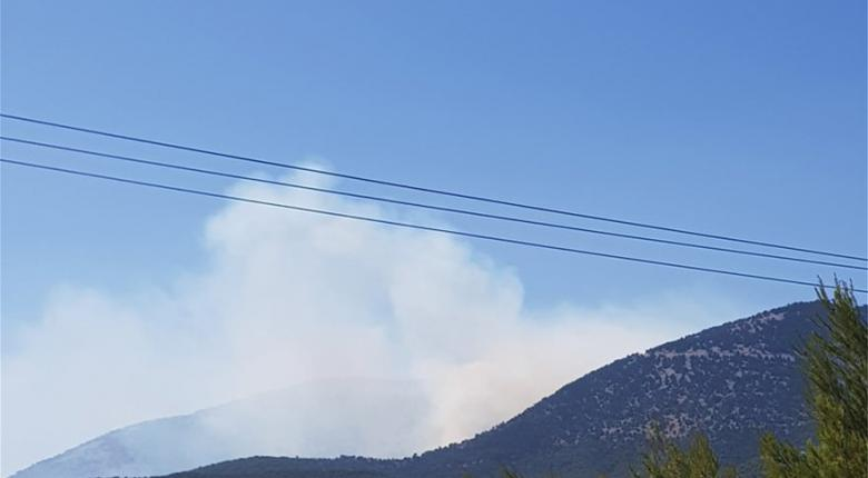 Μεγάλη φωτιά σε πευκόφυτη δύσβατη πλαγιά του Κιθαιρώνα  - Κεντρική Εικόνα