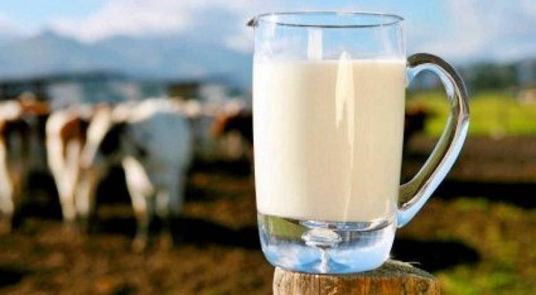 Με ρυθμό ανάπτυξης 40% «τρέχουν» οι εξαγωγές γνωστής γαλακτοβιομηχανίας - Κεντρική Εικόνα