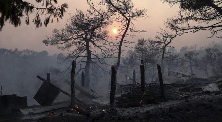Στάχτη 28.000 στρέμματα πευκοδάσους στην Εύβοια - Τεράστια οικολογική καταστροφή - Κεντρική Εικόνα
