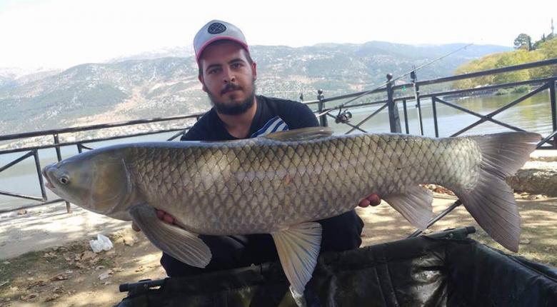 Απίστευτοι! Ψάρεψαν «grass carp» 10 κιλών αλλά το έριξαν πίσω στην Παμβώτιδα (video+photo) - Κεντρική Εικόνα