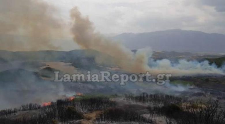 Δίπλα από τα σπίτια πέρασε η φωτιά στο χωριό Δίβρη του Ν. Φθιώτιδας - Κεντρική Εικόνα