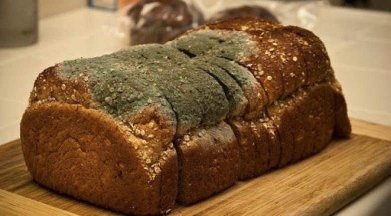 Ποια αρτοβιομηχανία κρύβεται πίσω από το μουχλιασμένο ψωμί της Lidl (photos)  - Κεντρική Εικόνα