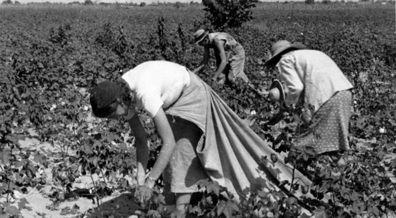 Οι Ρουμάνες σκλάβες της ντομάτας στην Ιταλία - Κεντρική Εικόνα