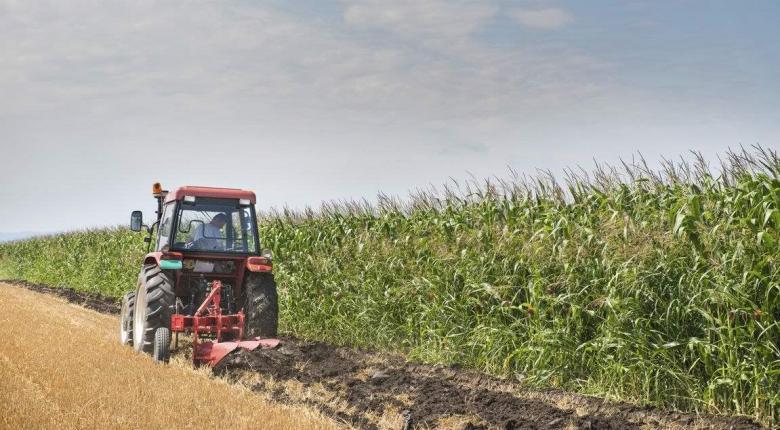 ΟΠΕΚΕΠΕ: Νέα συνολική πληρωμή 3,5 εκατ. ευρώ για 1.333 δικαιούχους αγρότες (pdf) - Κεντρική Εικόνα