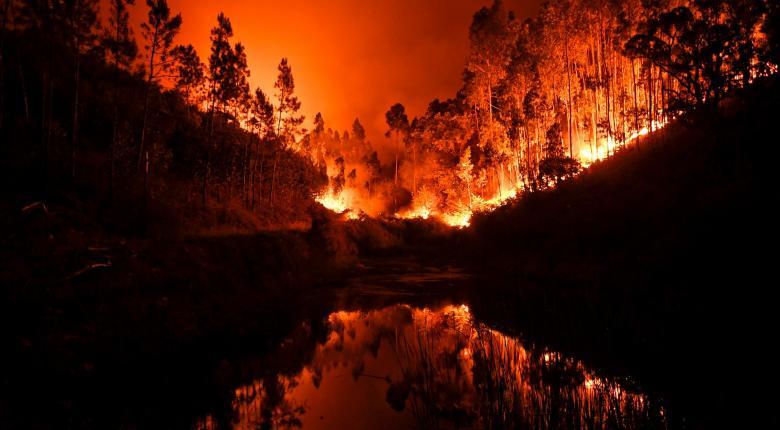 Στους 35 οι νεκροί από τις πυρκαγιές σε Πορτογαλία και Ισπανία - Κεντρική Εικόνα