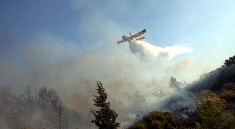 Υπό μερικό έλεγχο η πυρκαγιά στην Ερέτρια  - Κεντρική Εικόνα