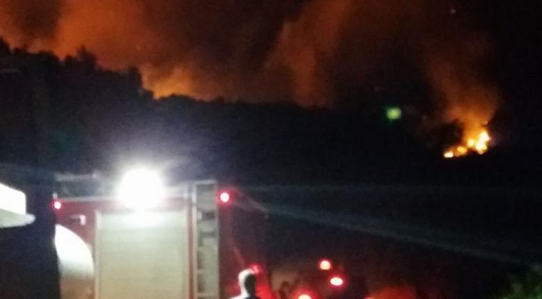 Λάρισα: Πυρκαγιά στην περιοχή των Φαρσάλων - Κεντρική Εικόνα