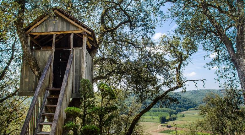 Μέχρι και… δεντρόσπιτα έβαλαν φέτος στο Airbnb: Πόσο πάει η διανυκτέρευση - Κεντρική Εικόνα